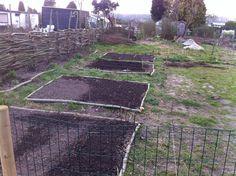 Beds in the garden