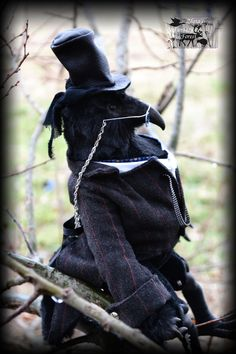 """HAND MADE Doll Dr. Benjamin Crow Anthropomorphic. Series of dolls 2015 """"Gothic Fantasy Forest"""" January 2015"""