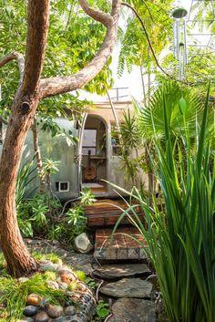 Moon to Moon: The botanical home of.... Musician Mileece Petre