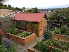 Love this garden, with the chickens and garden bed layout