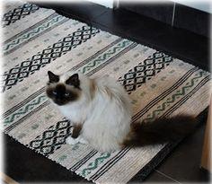 My hobby: Rag rugs