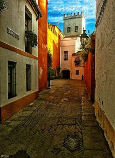 "Sevilla. Calle Judería // one of the streets in the jews quarter ""judería"" in the city of Seville, Spain"