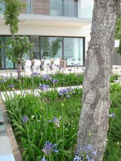 Luxurious Andalucian villa