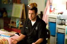 Adam Sandler in Bedtime Stories