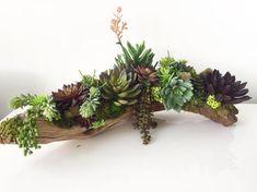 Succulent Arrangement Artificial Succulent by LoveJoySucculents