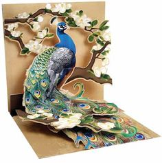 Peacock and Magnolias Pop Up Greeting Card