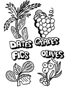 coloring page date fruit