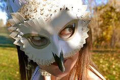 Bubo scandiacus: My Snowy Owl Costume | Corvus tristis: Science ...