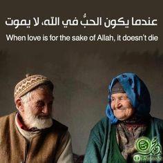 When love is for the sake of Allah, it doesn't die... Love for Allah's sake! ❤️