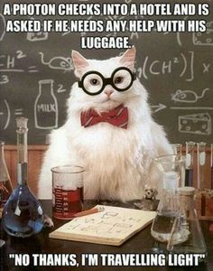 love nerdy jokes