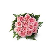 1 Dozen Pink Roses  USD 39.99