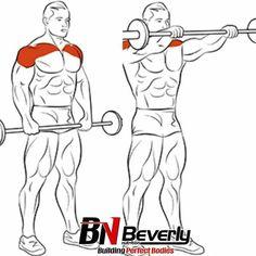 Shoulder & Traps Exercises Ejercicios de Hombro y Trapecios