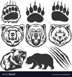Find Bear Grizzly Footprint Paw Print Claw stock images in HD and millions of other royalty-free stock photos, illustrations and vectors in the Shutterstock collection. Thousands of new, high-quality pictures added every day. Bear Paw Tattoos, Grizzly Bear Tattoos, Grizzly Bear Drawing, Bear Footprint, Bear Paw Print, Native American Tattoos, Bear Vector, Bear Silhouette, Bear Claws