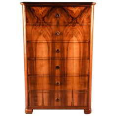 19th Century South German Biedermeier Chiffoniere or Chest of Drawers