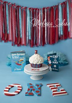 Melissa Calise Photography (Dr. Seuss Cat in the Hat Cake Smash First 1st Birthday Baby Boy Red Blue Photoshoot Posing Ideas)