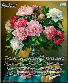 Plants, Planters, Plant