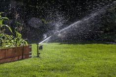 Orbit 62100 Yard Enforcer Motion Activated Sprinkler