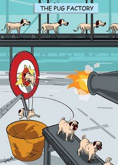 The Pug Factory... This is hilarious! :)