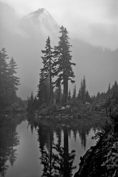 Items similar to Mountain over Trees at Melakwa Lake - Photography Print on Etsy - Jayson McIvor - Natur Tattoo Arm, Natur Tattoos, Lake Photography, Landscape Photography, Mountain Photography, Forrest Tattoo, Wilderness Tattoo, Tattoos Mandala, Landscape Tattoo