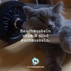 Bauchmuskeln ohne B sind  Auchmuskeln.