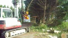 Démonstration d'abattage d'arbres avec une pelle sécateur de chez T.PRO. Coupe d'arbres rapide et en toute sécurité. En quelques secondes un arbre peut être découpé et déposé sur le côté grâce à la pince de maintient. http://abattage-arbre.fr/