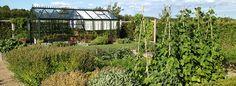 Drivhus – God råd til opbygning og indretning – Indretning af drivhus