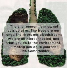 "The environment is in us, not outside of us.  The trees are our lungs, the rivers our bloodstream.  We are all interconnected, and what you do to the environment, ultimately you do to yourself."" -Ian Somerhalder"
