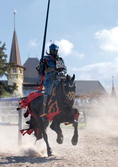 jousting, another of the sports my fencing buddies started learning but I could not afford. Dream here :)