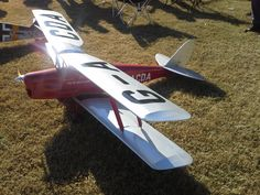 H9 Tiger Moth