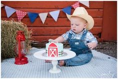 Barn Yard Theme Cake Smash, Cake Smash Photography