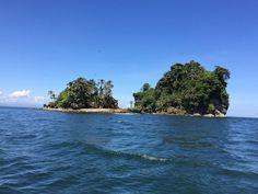 Birds Island