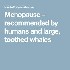 Menopause – recommended by humans and large, toothed whales Fabulous Beasts, Evolutionary Biology, Babysitting, Menopause, Whales, Teeth, Study, Studio, Whale