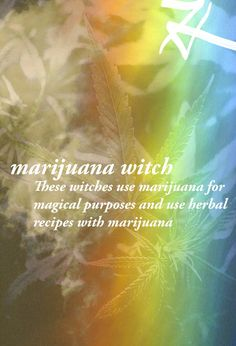 The Witch Is In • imawitchywitch:   Marijuana Witch: A type of Green...