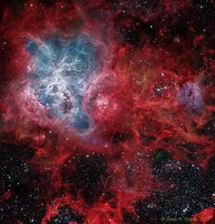 The Cosmic Web of the Tarantula Nebula  It is the largest and most complex star forming region in the entire galactic neighborhood. Located in the Large Magellanic Cloud, a small satellite galaxy orbiting our Milky Way galaxy, the region's spidery appearance is responsible for its popular name, the Tarantula nebula.