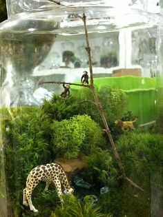 Twig Terrariums! I would love to do a terrarium project with each of you. You could find a container and collect any interesting bits & pieces you might like to include in it / I can provide all other supplies and directions. Check-out this wonderful store / they also have a book, which I love... http://twigterrariums.myshopify.com/