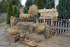 dożynki Hay Bale Decorations, Harvest Decorations, Seasonal Decor, Fall Decor, White Sulphur Springs, Creation Crafts, Autumn Display, Pumpkin Picking, Country Art
