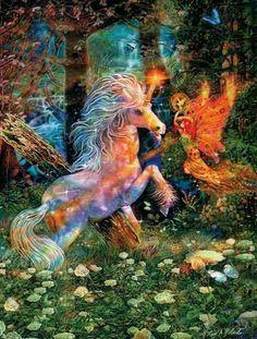 Unicorn and fairy Enchanting