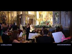 La Bella y la Bestia - Beauty and the Beast - wedding - bodas Murcia Ali...