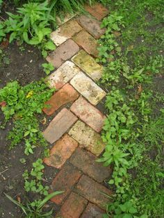 One line of herringbone bricks on either side of a path.