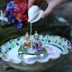 """522 Likes, 7 Comments - Remember Krishna (@rememberkrishna) on Instagram: """"Sweetest little capture of bathing ceremony .Remember - you can claim your OWN heirloom Krishna…"""""""