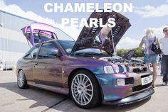 Mix 'N Match Chameleon Paint Pack