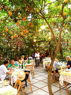 Lemon trees cover piazza and restaurant in Sorrento, Italy. This is what I adore about dining al fresco!