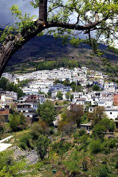 Trevelez. Las Alpujarras. Granada. Spain. Foto: Antonio Fdez Garcia