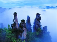 A unique national forest park located in Zhangjiajie City in northern Hunan Province in the Peoples Republic of China. In 1982 it was recognized as Chinas first national forest park, In Zhangjiajie Geopark was listed as a UNESCO Global Geopark. Zhangjiajie, Gaia, Travel Pictures, Cool Pictures, Park Pictures, Beautiful Pictures, China Travel Guide, Forest Park, Forest Theme