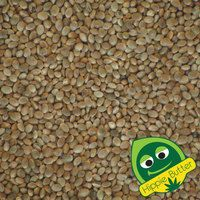 Why are hemp seeds good for you? #hempnews