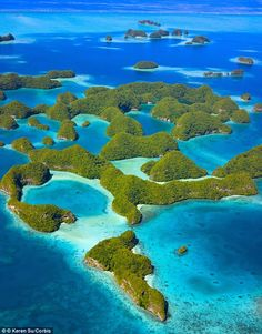 A marine sanctuary which houses thousands of fish species, translucent waters and breath-t...