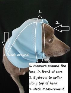 23 Best dog clothes images in 2018 | Doggies, Dog cat, Pet clothes