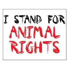 Animal RIGHTS!