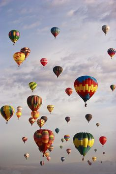 Sky filled with hot air balloons