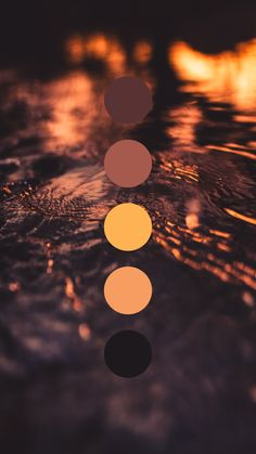 Brand color palette inspiration designed by Amari Creative, branding and design studio. Color Schemes Colour Palettes, Colour Pallette, Orange Palette, Colour Board, Color Stories, Color Swatches, Corporate Design, Color Theory, Aesthetic Wallpapers